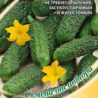 челябинский каталог сады россии семян 2018овощи смотреть и